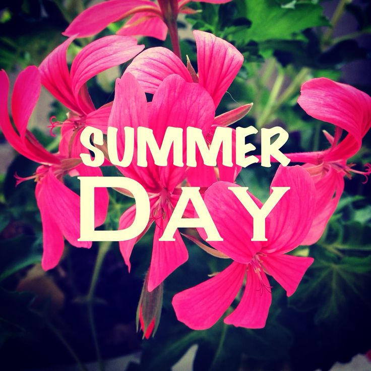 #saison #pinkflower #nature #couleur #color #flowers #pink #wellness #instaflower #pinkflowers  #coaching #lifestyle #communication #image #sky #look #colorimetrie #personnality #instagram #design #printemps #businesswoman #inspiration #creation #summer