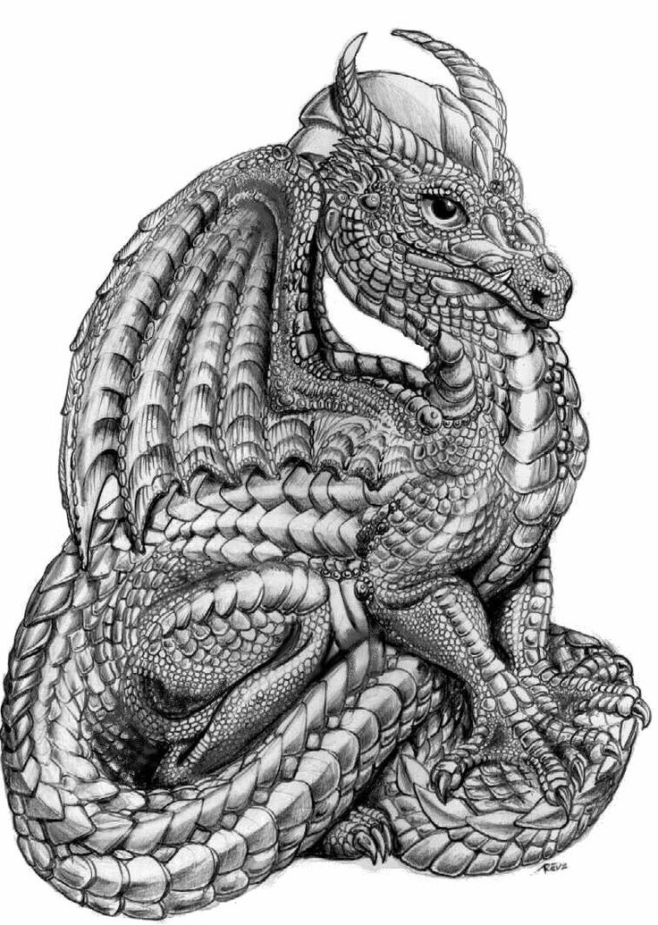 Dragon Dragon Figurines Dragon Coloring Page Dragon Images