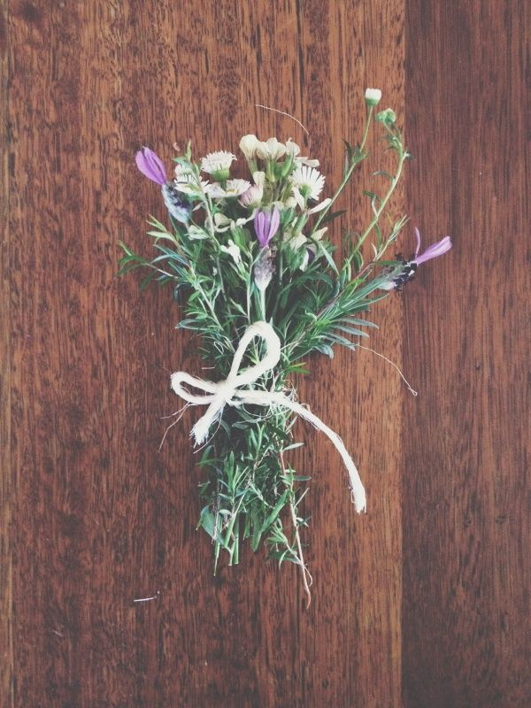Flowers / photo by Annabelle Lambie Crow