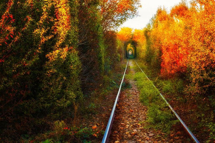 O famoso túnel do amor