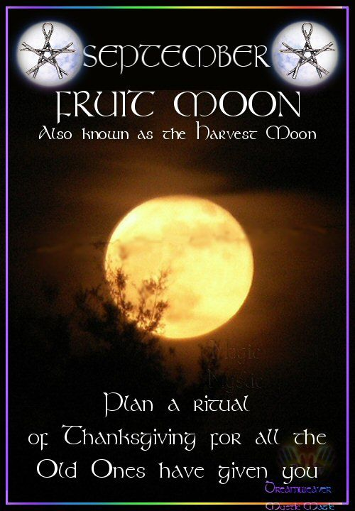 SEPTEMBER – FRUIT MOON Also known as the Harvest Moon Plan a ritual of Thanksgiving for all the Old Ones have given you.
