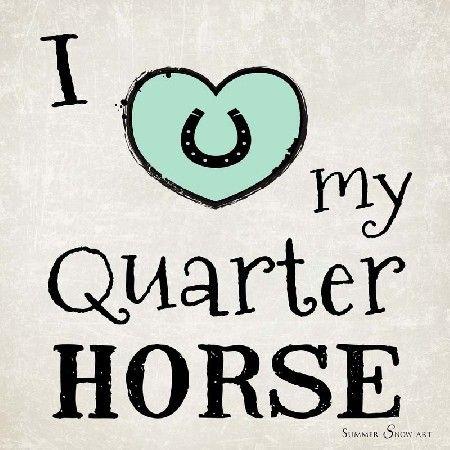 I Love My Quarter Horse by Summer Snow Art