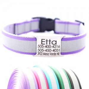 Reflective Dog Collar with Engraved Personalized Name Plate