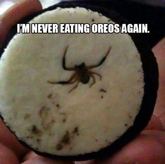 Oh no, not the Oreos… I literally just got done eating oreos like 2 minutes ago.