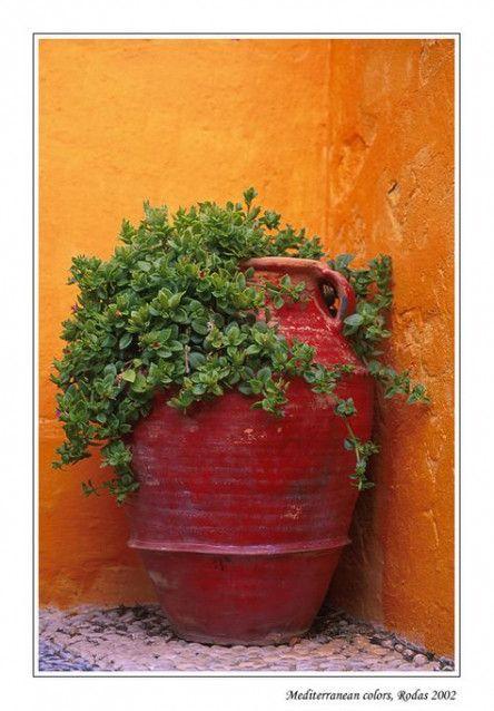 New Garden Design Mediterranean Colour Ideas
