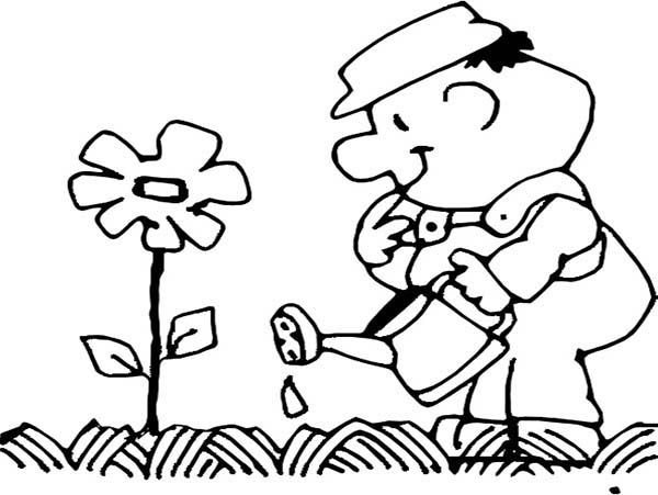 Gardener Watering The Flower With Watering Can Coloring