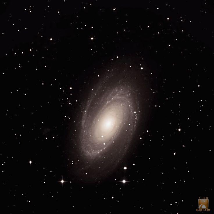 M81 Spiral Galaxy in the Constellation Ursa Major through Slooh's 20'' scope