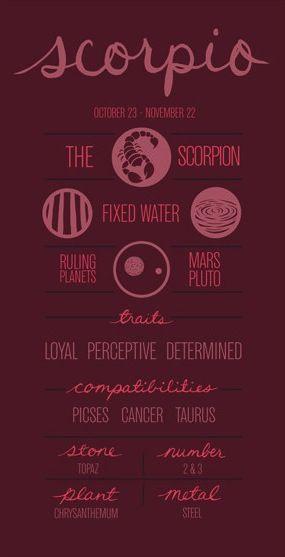 Scorpio ~ ...no wonder we click...we're compatible lol