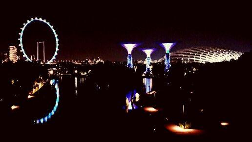 View from the bridge. Gardens by the Bay. Singapore. Photo: Raninda
