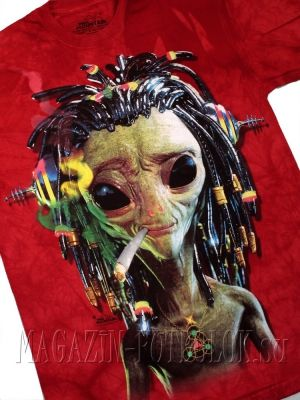 яркая футболка mountain jammin alien
