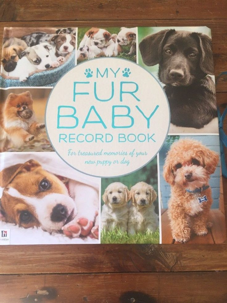 Baby Dog 5 Years Memory Record Book For Your Pup Pooch Brand New  | eBay