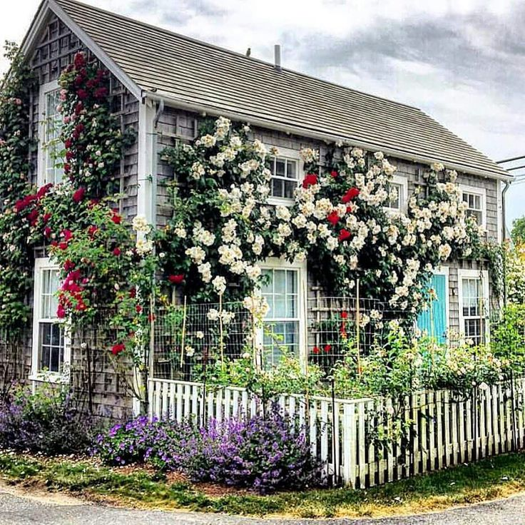 Best Place To Stay On Cape Cod: 3923 Best Cape Cod/Nantucket Islands And Homes Images On