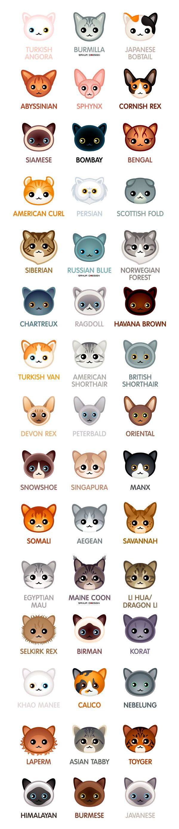Kawaii cat breeds for the Сat-people of the world... Meow =^● ⋏ ●^=Don't hesitate to name your loved ones if I missed 'em.