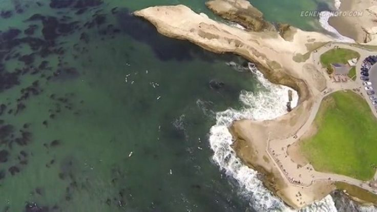 WOW! I actually cried. (pause) Drones SHOULD Film Surf Videos More Often! This is simply beautiful. I am often one of those people standing at the fences This is one of my favorite spots. 30min from where I live... Steamer Lane, Santa Cruz, CA is a treat EVERY time I go.  ENJOY!