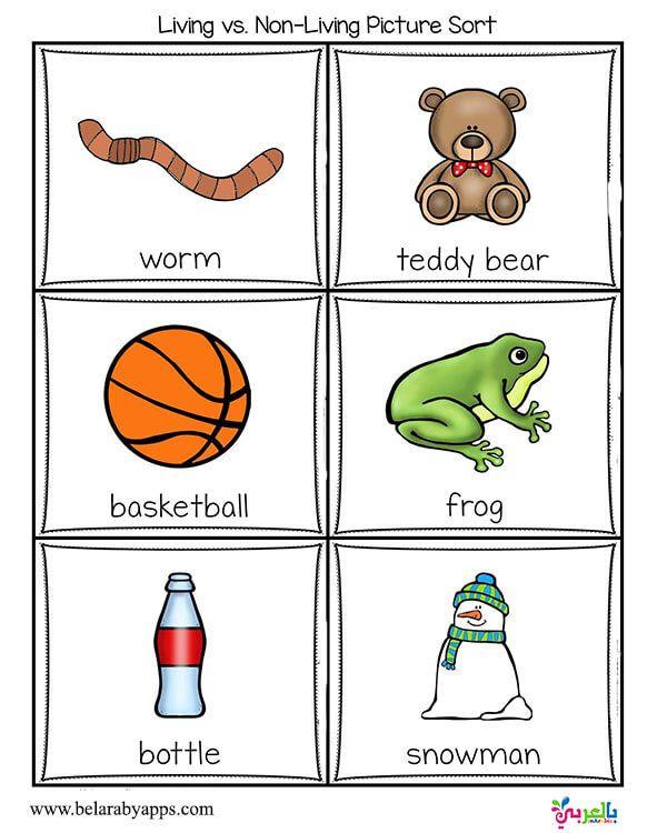 Living Vs Nonliving Activities For Kindergarten بالعربي نتعلم Kindergarten Activities Free Kindergarten Worksheets Kids Worksheets Printables