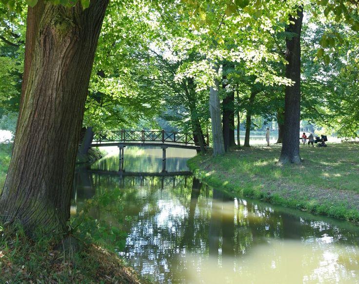 New Nr Mein im Sommer Auf nach Cottbus via Cottbus mit dem Branitzer Park und eine Kanufahrt im Spreewald are calling