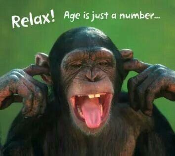 happy birthday funny monkey - photo #20