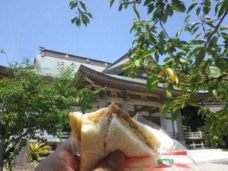 16.07.18 ハムカツサンド食った。ただ買食いしたというだけの、ナンセンス写真一枚。