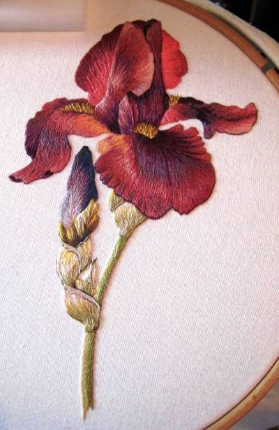 satin stitch embroidery: Flower Embroidery, Spartan Iris, Iris Stitches, Hands Embroidery, Trish Burr, Embroidery Stitches, Margaret Cobleigh, Fabulously Embroidery, Burr Spartan