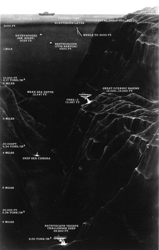 A diagram showing the Trieste and the depths of other submersibles compared to the depth of the Mariana Trench.