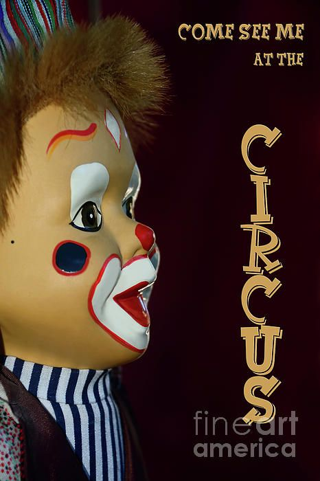 My side view photograph / portrait of a cute little clown with painted face and red nose who loves to show his tricks at the circus. Circus Clown by Kaye Menner Photography - Quality Prints Cards Products at: https://kaye-menner.pixels.com/featured/circus-clown-by-kaye-menner-kaye-menner.html