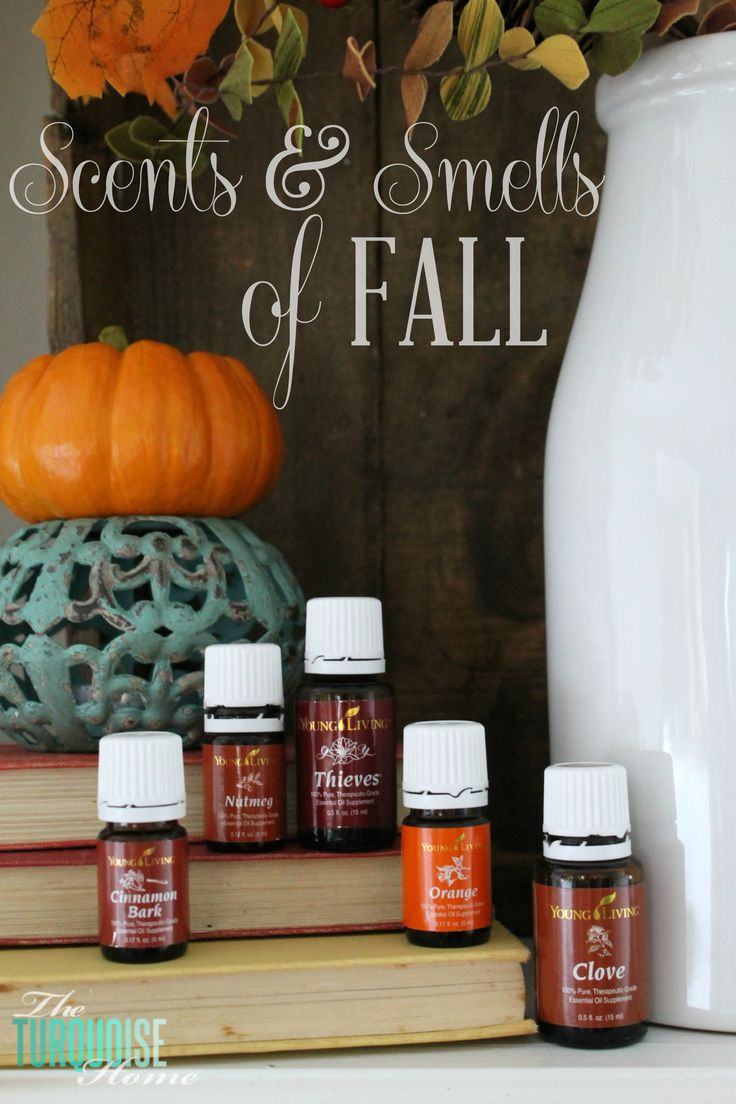 I am passionate about two things: the fall season and essential oils. So, when they collide, I am one happy girl! For those of you have been around a while, you've heard me talk about the natural w...