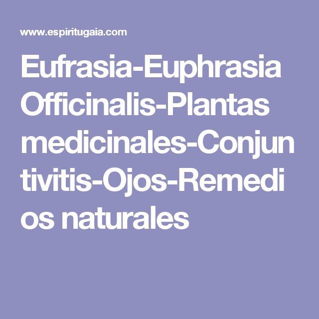 Eufrasia-Euphrasia Officinalis-Plantas medicinales-Conjuntivitis-Ojos-Remedios naturales