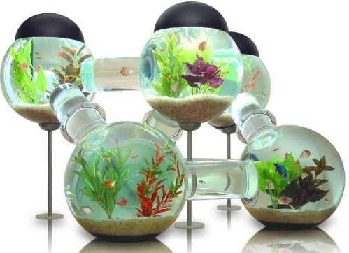 Wow. For the person who REALLY loves their fish.