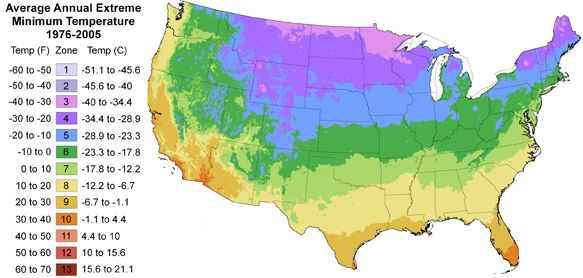 Find your plant hardiness zone green spaces green places pinterest to look plants and maps for What garden zone am i