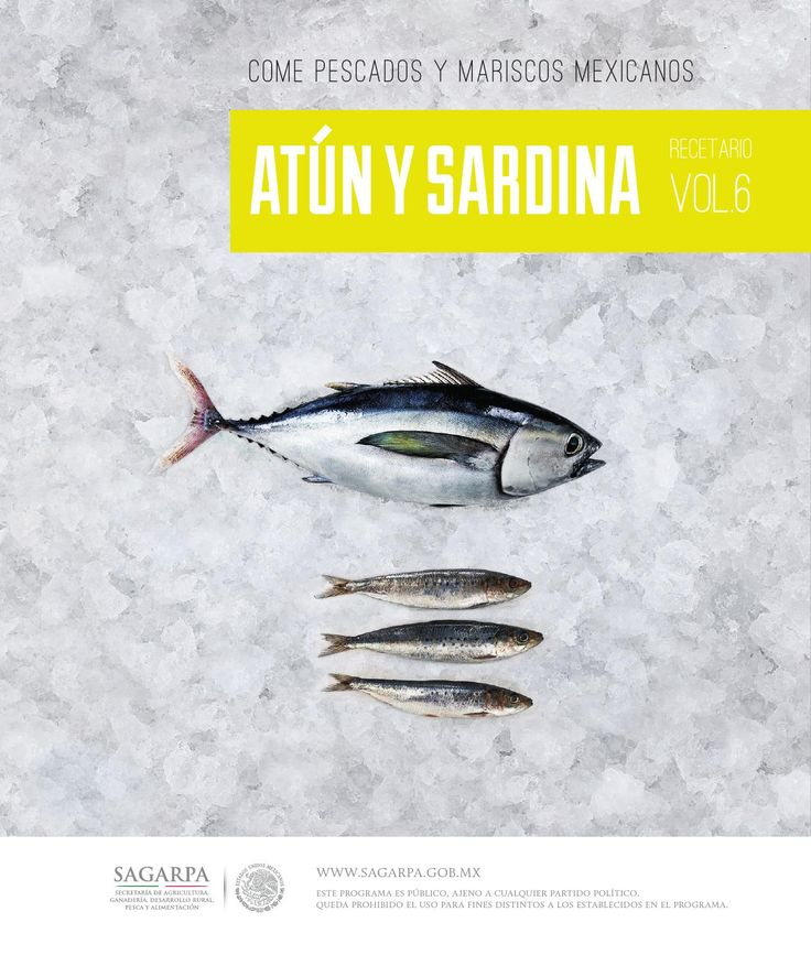Recetario atún y sardina  No dejes de preparar las mejores recetas de atún y sardina.