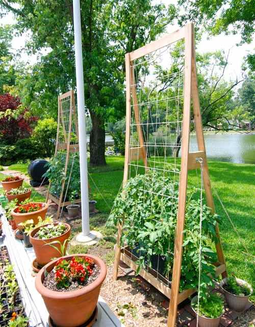 Trellis Design Gallery For The Earthbox System. Love This Personu0027s Trellis  That They ...