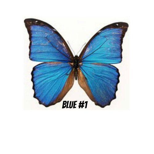 Tijdelijke Tattoos - 2 butterfly tattoos, roze, paars, natuur, bijen, buitenshuis, inkt, enkel, schouder, voet, arm, been, kinderen, partij gunst