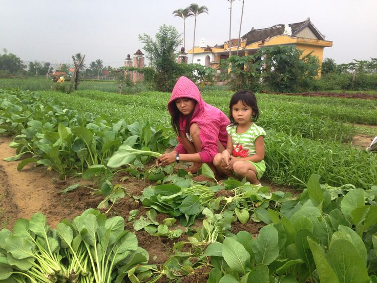 Two beautiful children who now have a real go at a positive future.  Thanks CBHS! #vietnam #vietnamschooltours #servicework