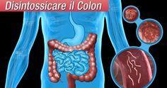 Mela, chia e semi di lino per depurare il colon | Rimedio Naturale | Bloglovin'