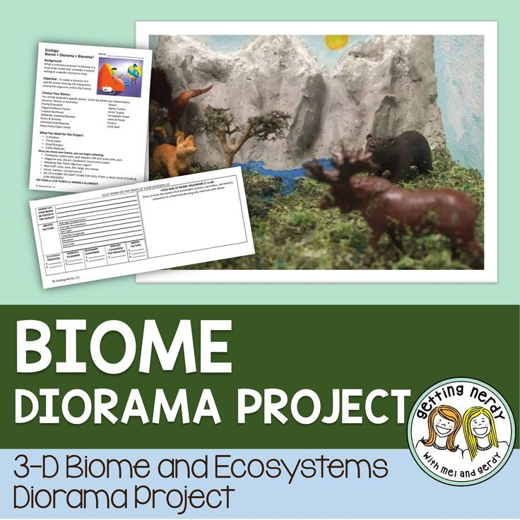 Ecosystem Project - Biome Diorama for Ecology Students will learn about abiotic and biotic factors in ecosystems and apply knowledge of food webs and food chains in a biome with this week-long project to create a 3-d diorama or BIORAMA of a biome of their choosing!