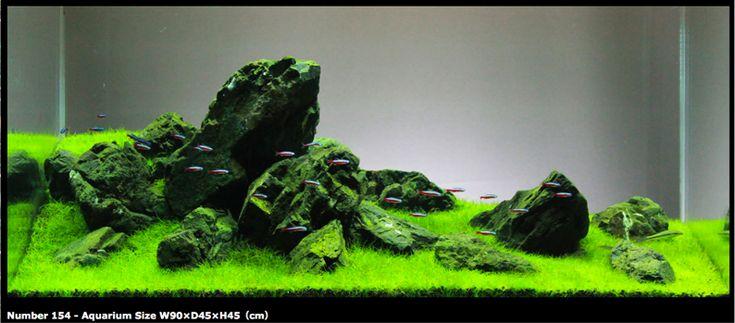 Aquascape Rock Iwagumi (japanese rock garden) style, aquascape all ...