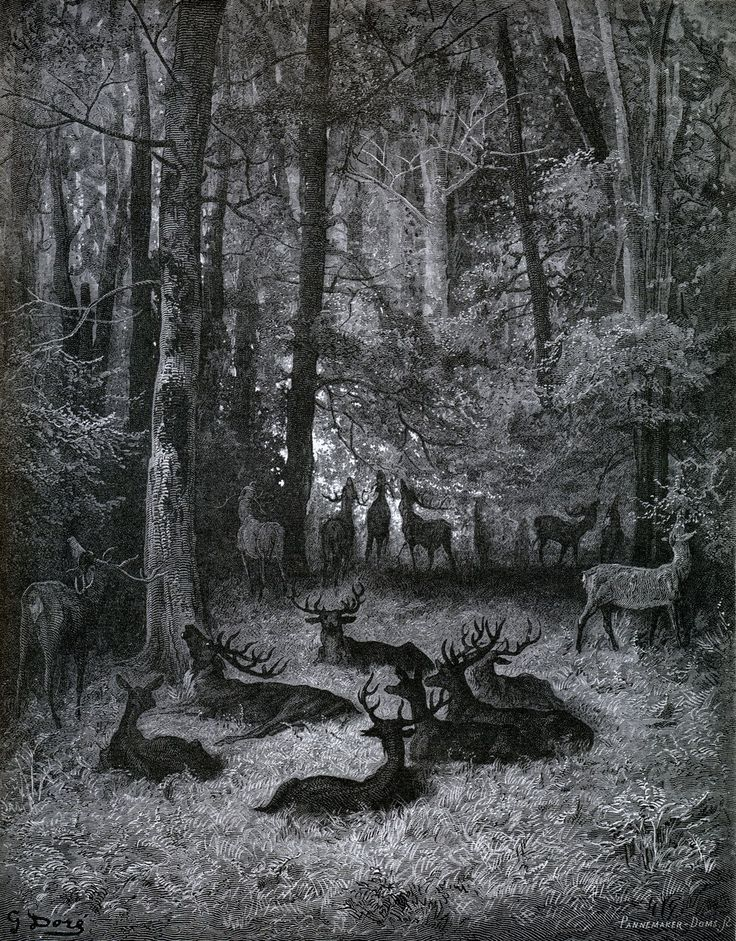 Gustave Doré a literal stag party