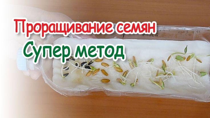 Любовь Зиброва.Проращивание семян на бумаге супер метод /Sprouting seeds...