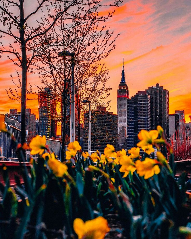 Manhattan from Long Island City by Mike Gutkin NYC by newyorkcityfeelings.com - The Best Photos and Videos of New York City including the Statue of Liberty Brooklyn Bridge Central Park Empire State Building Chrysler Building and other popular New York places and attractions.