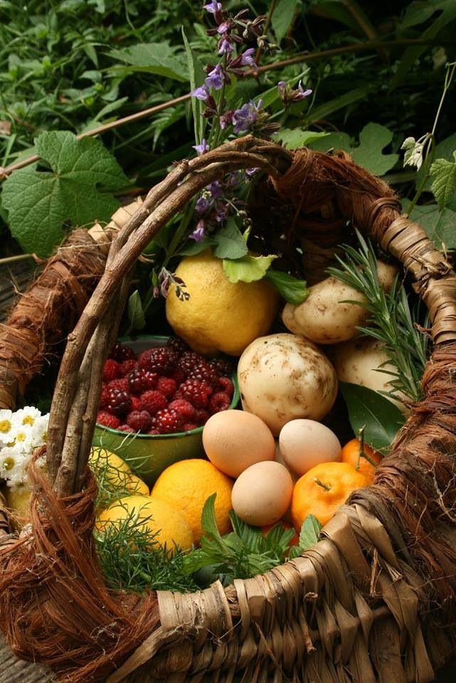 Garden fresh ✿⊱╮
