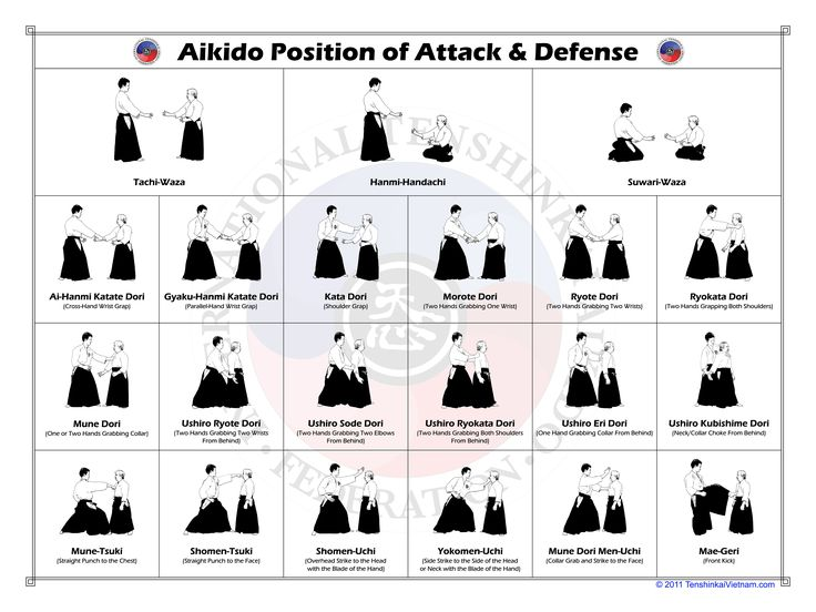 Aikido position of Attack & Defense