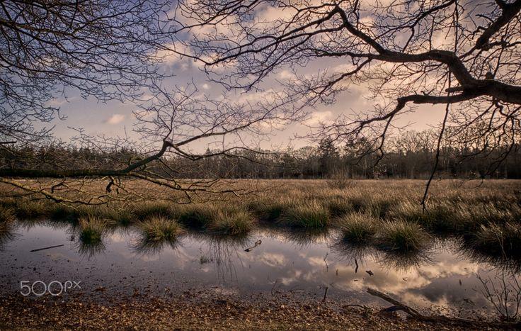 Den Treek #1, Leusden, The Netherlands - Den Treek, Leusden, The Netherlands