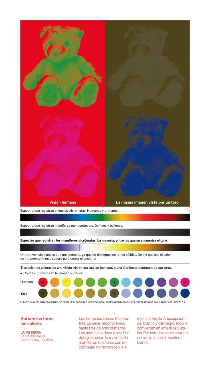 Así ven los toros los colores Jaime Serra La Vanguardia (España) infografía infographics sanfermines