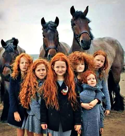 Pegs cottage,Ireland ...... Wow , these girls will one day break a few hearts ..... Beautiful