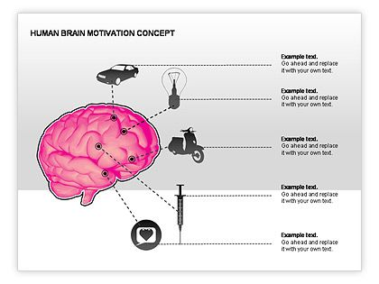 Human Brain Motivation Diagrams http://www.poweredtemplate.com/powerpoint-diagrams-charts/ppt-organizational-charts/00269/0/index.html
