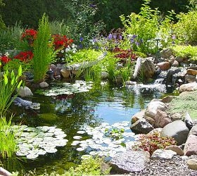 Waterfall Fish Pond, Water Gardens, Ponds, Waterfalls, Ecosystem Ponds, Pond Plans, Streams, Outdoor Living, Outdoor Life Styles, Butterfly Gardens, Water Features, Bird Baths by Acorn Landscaping of Rochester NY 585-442-6373