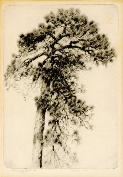 drypoint by Alfred Hebert Hutty