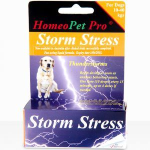 Relief For Dogs With Anxiety - Storm Stress