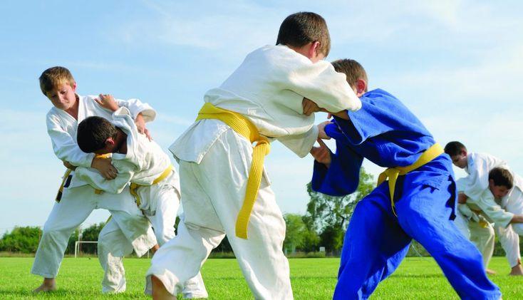 La Concejalia de Deportes del Ayuntamiento de Fuenlabrada junto con la Escuela Municipal de Judo y la Federación Madrileña de Judo, organizan una competición dentro del programa de Deporte Escolar Municipal.