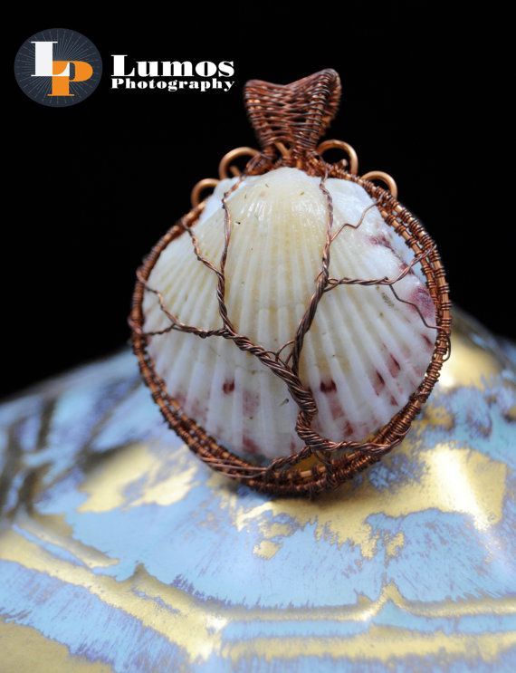 Real Calico Scallop Shell Raw Copper or by GutsyGirlJewelry